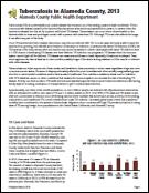 TB Report 2013