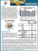 TB Report 2016