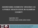 Domestic Violence 2015